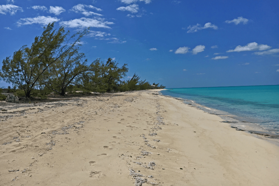 Normans Cay Bahamas - Top Diving Destinations To Get To By Private Jet